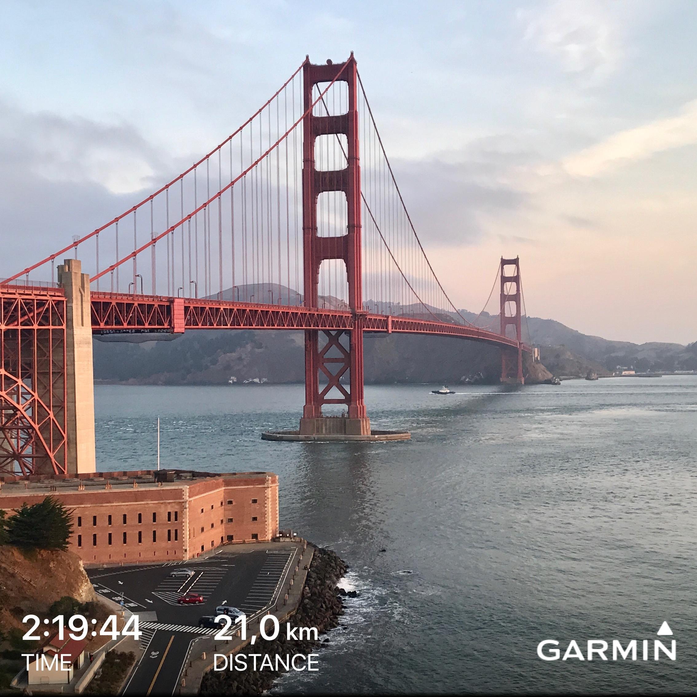 Fantastic training run last Saturday in San Francisco (Véra & Dietrich)