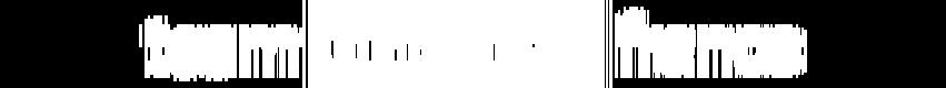 Ndl logo330px